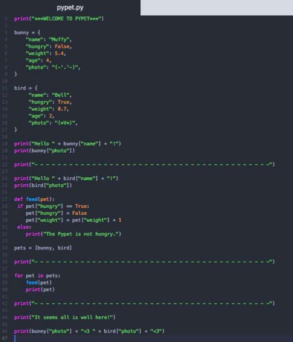 Digital pet source code