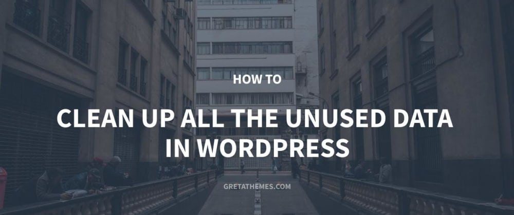 Cover image for How to Clean Up All the Unused Data in WordPress