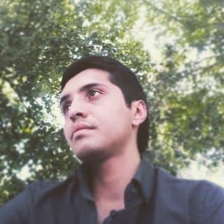 Hans Piña profile picture