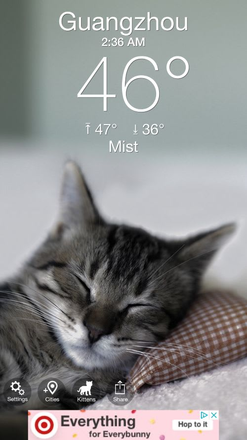Weather Kitty App