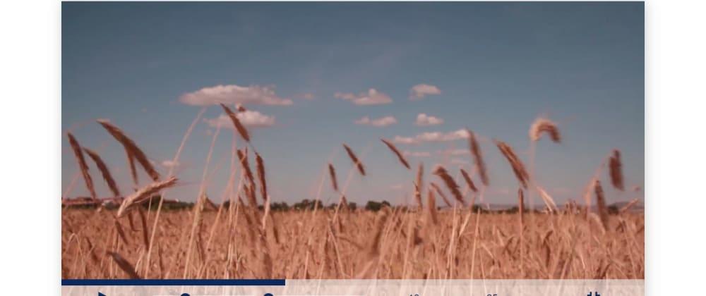Cover image for How I customized a video Player + bonus(fullscreen video)