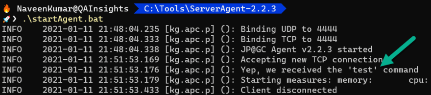 Testing the Server Agent