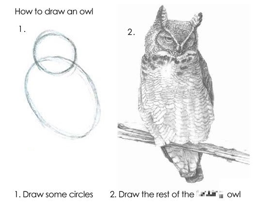 "1. ""Draw some circles."" 2. ""Draw the rest of the &$%# owl"""
