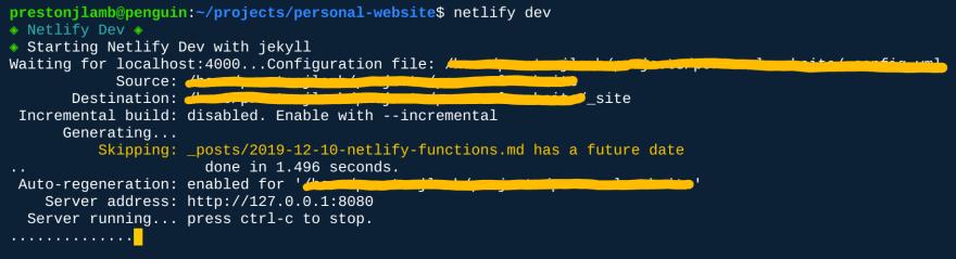 netlify dev command output