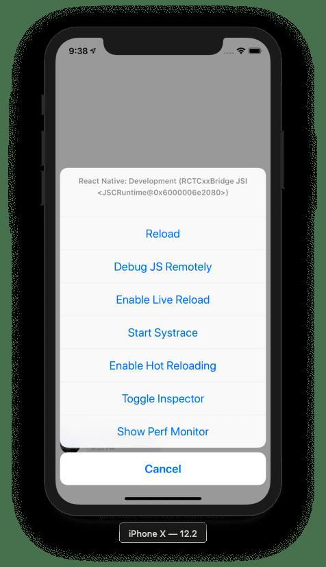 React Native Debugger Screenshot iOS Simulator