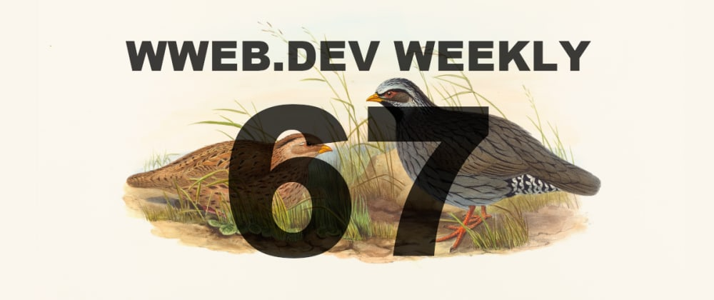 Cover image for Weekly web development resources #67
