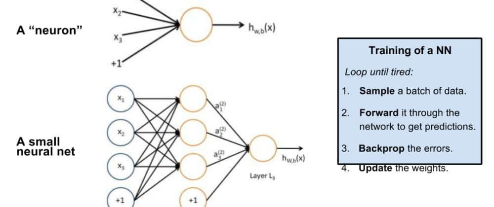 Cover image for Deep Neural Network (DNN) in a Brief