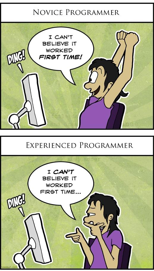 developer life