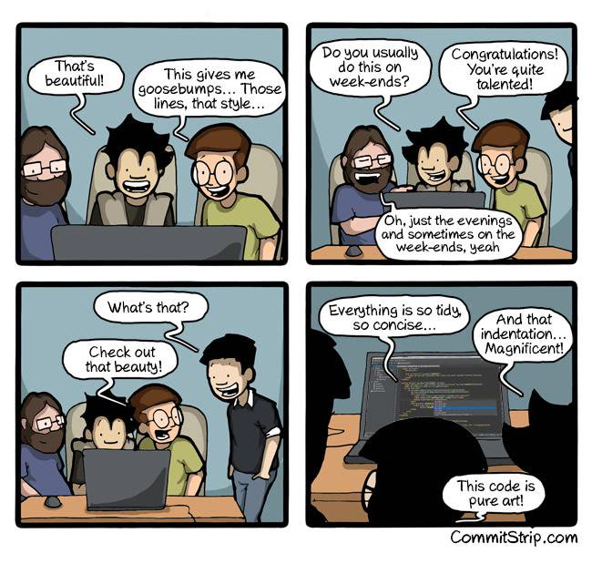 Comic images on Coding from the internet #1