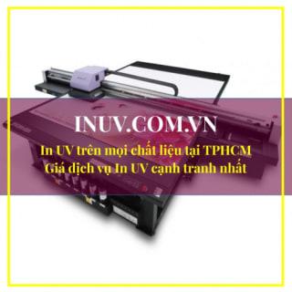 InUVcomvn profile picture