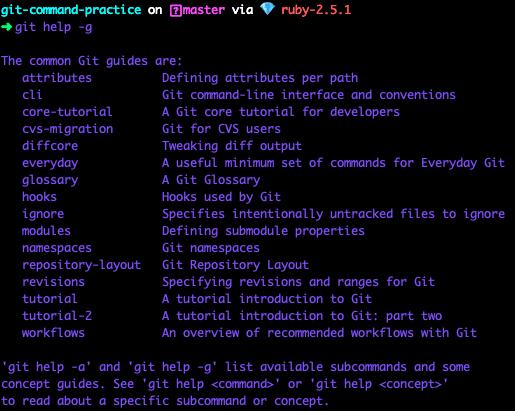 terminal screenshot of command git --help -g