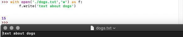 Python Idle and .txt file windows