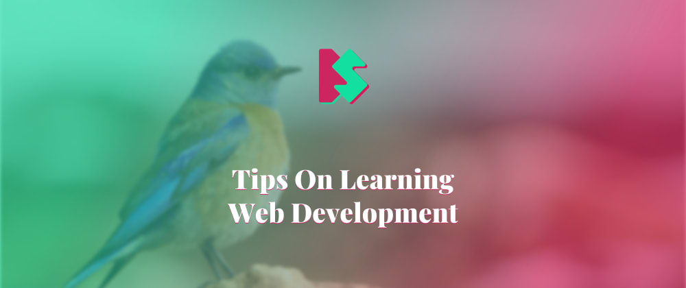 Cover image for Tips On Learning Web Development