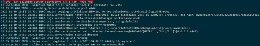 Selenium-Grid-Hub-Screenshot