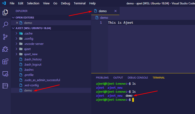 File created by VS Code inside WSL