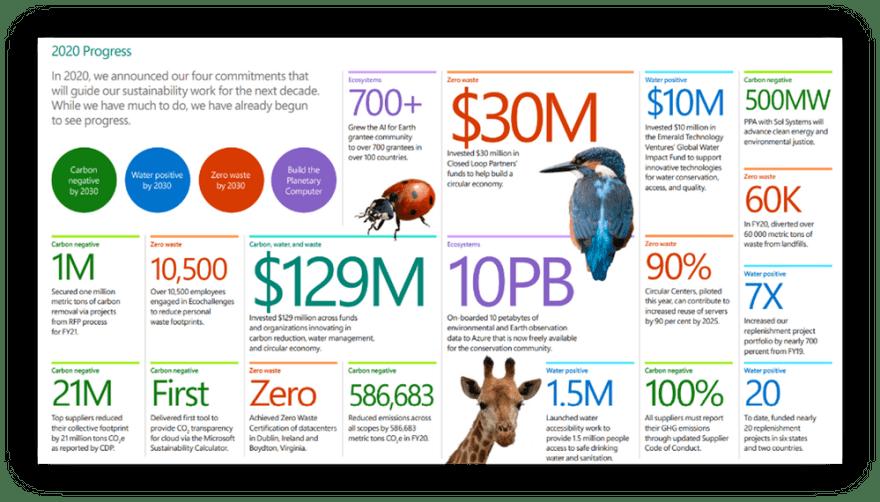 2020 Environmental Sustainability Progress Infographic