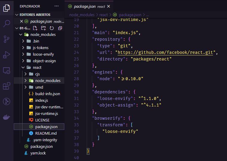 Arquivos do projeto e package.json da biblioteca React