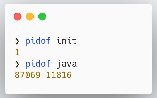 pidof-example