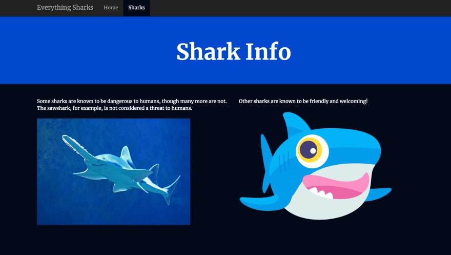 Shark Info Page