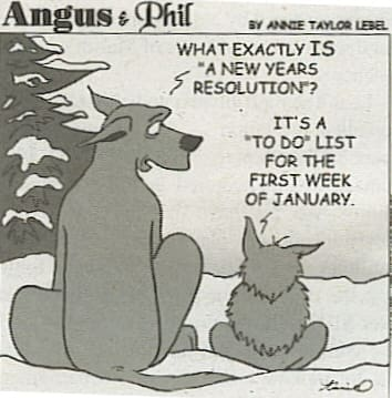 "What exactly is a ""new years resolution?"" - It's a To Do list for the first week of January"