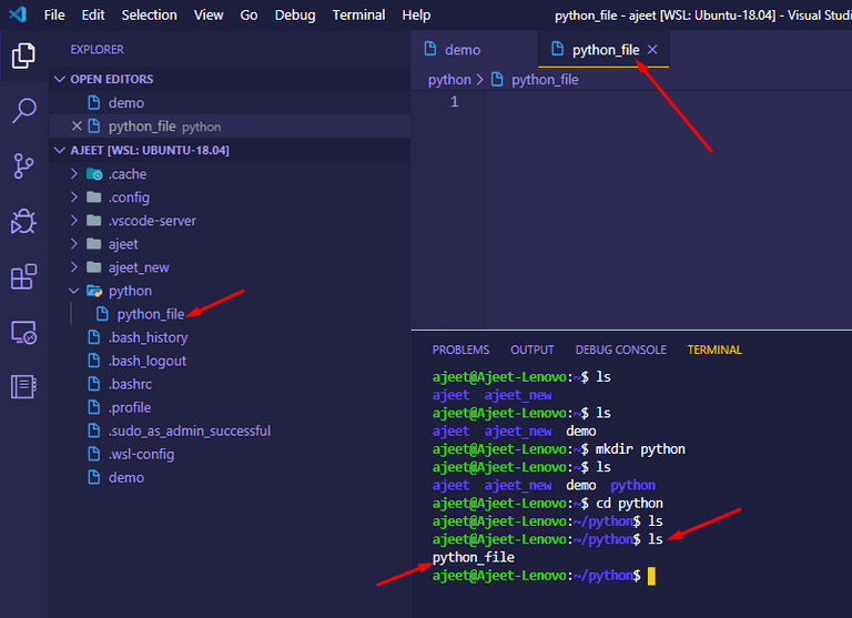 Create a file in a project directory in WSL