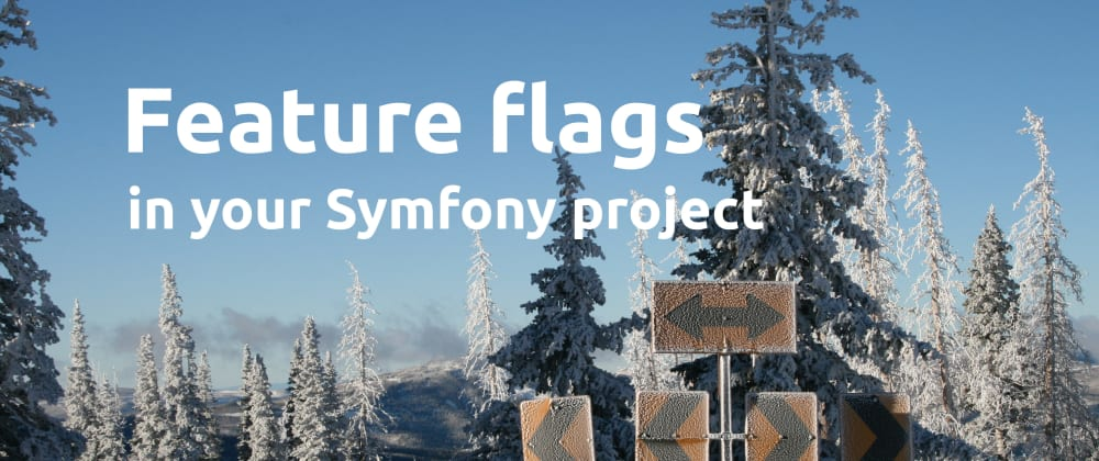 Cover image for Feature flags in your Symfony project 🌱