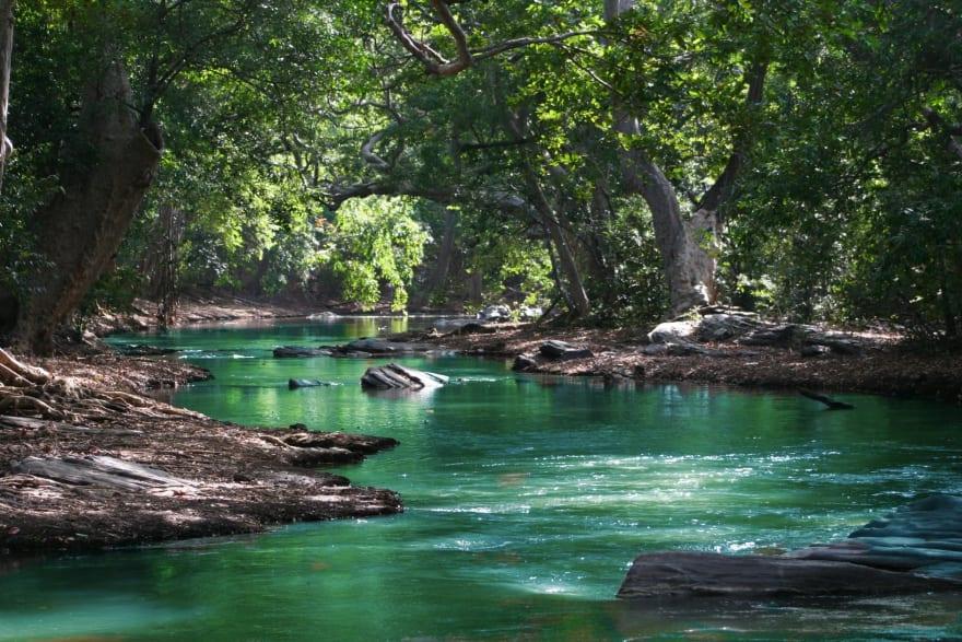a calming trip down the river