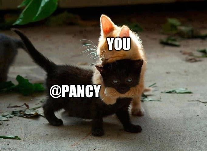 Kitties Hugging Meme