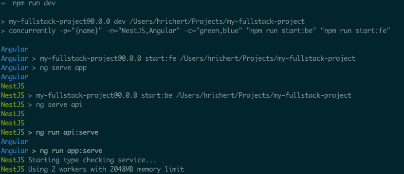 Output of running Angular and NestJS dev-servers concurrently