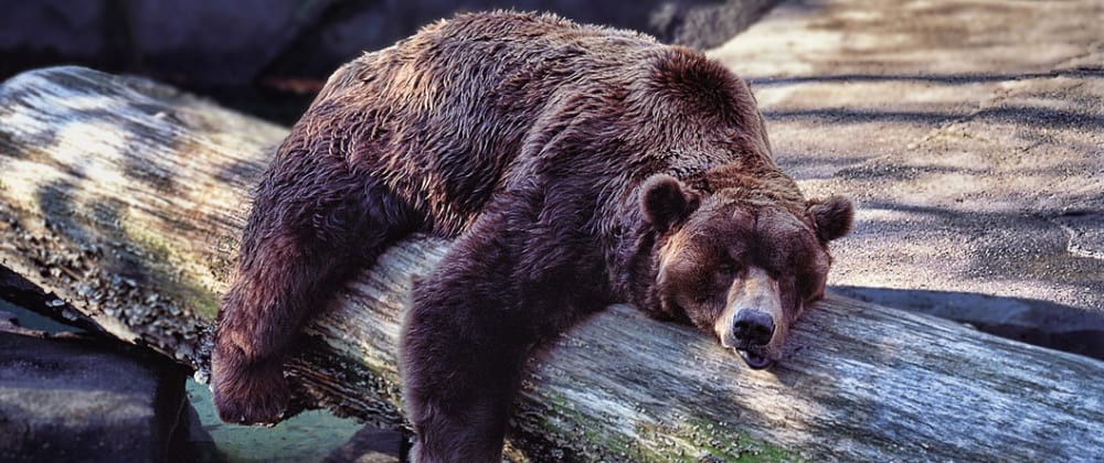 Cover image for Is Hibernate Really Worth It ?