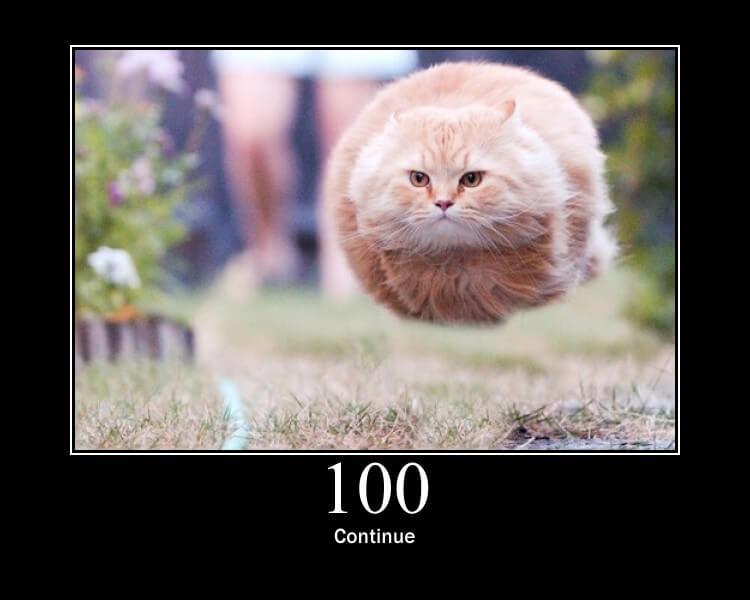 HTTP 100
