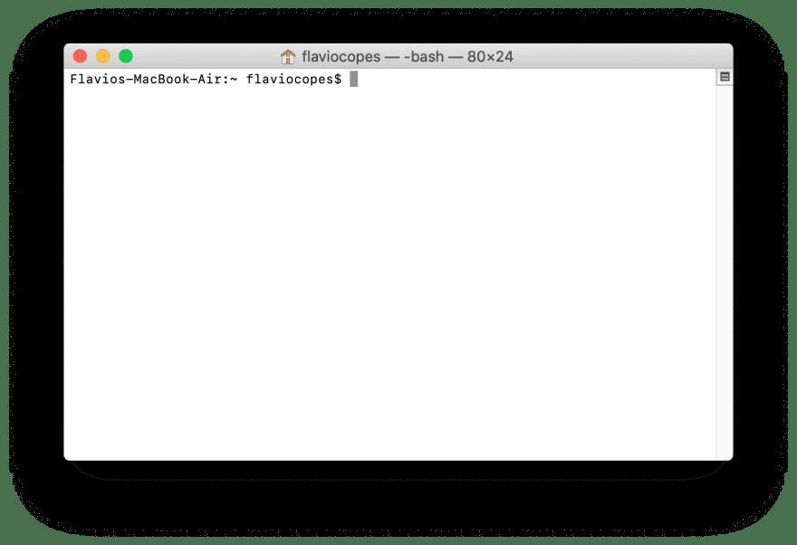 Flaviocope's MacOS Terminal