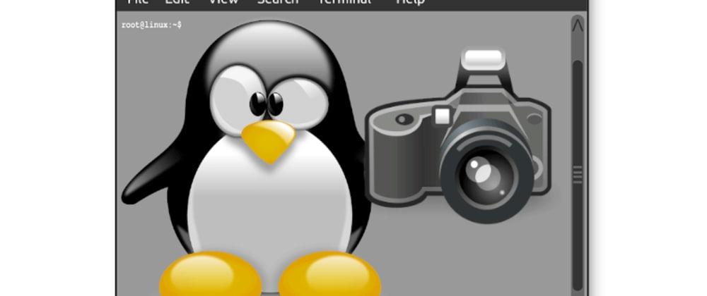 Cover image for Tire PrintScreen pelo terminal no Linux