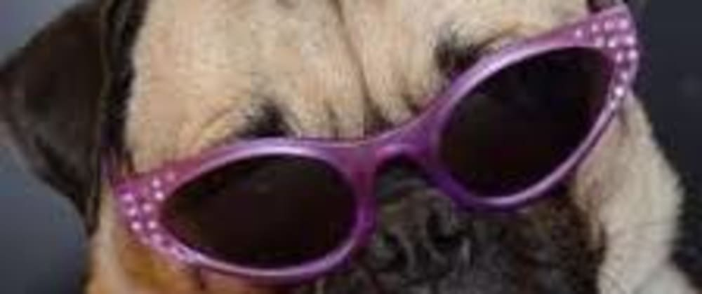 Cover image for Introducing the Sassy Pug Stack (A case for a pit stop on the way to a JS framework)
