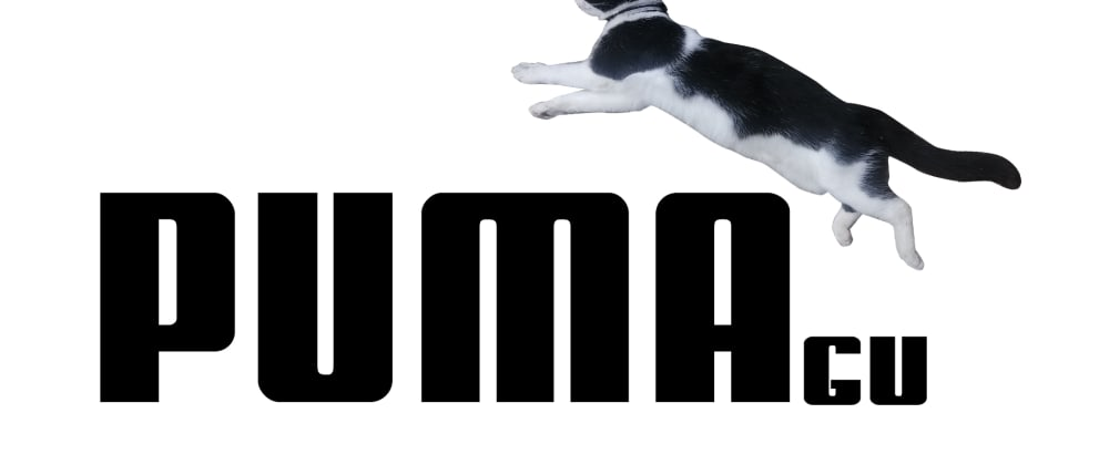 Cover image for Puma with my cat