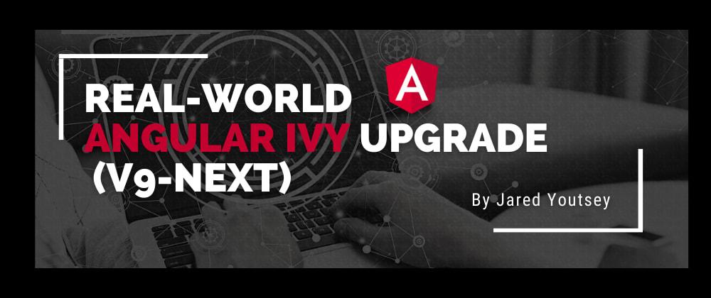 Cover image for Real-World Angular Ivy Upgrade (v9-next)