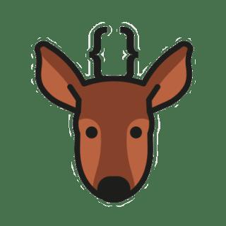 devsChile logo
