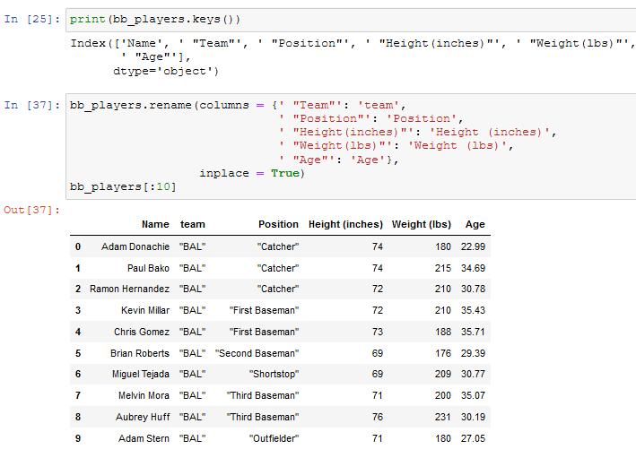 renaming columns in a pandas dataframe
