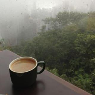 coffeegerm profile