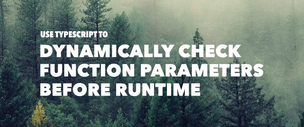 Cover image for Dynamically Check Function Parameters Before Runtime