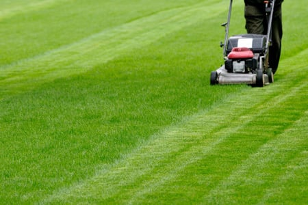 A lawn mower demonstrating striping