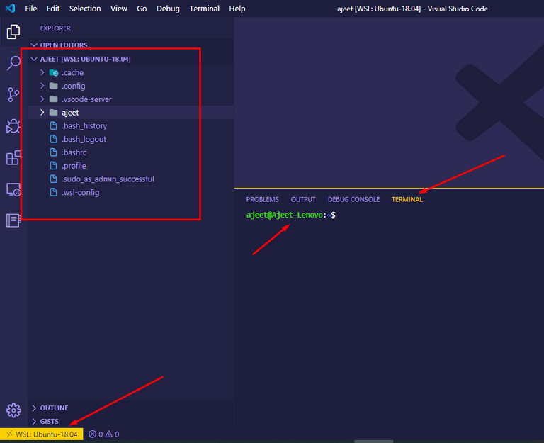 VS Code Editor View of Remote WSL