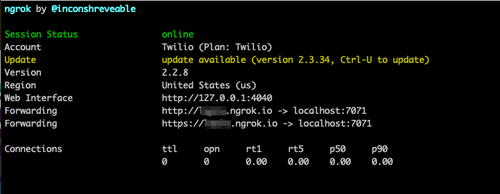 alt ngrok in the console image
