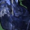 luzero profile image