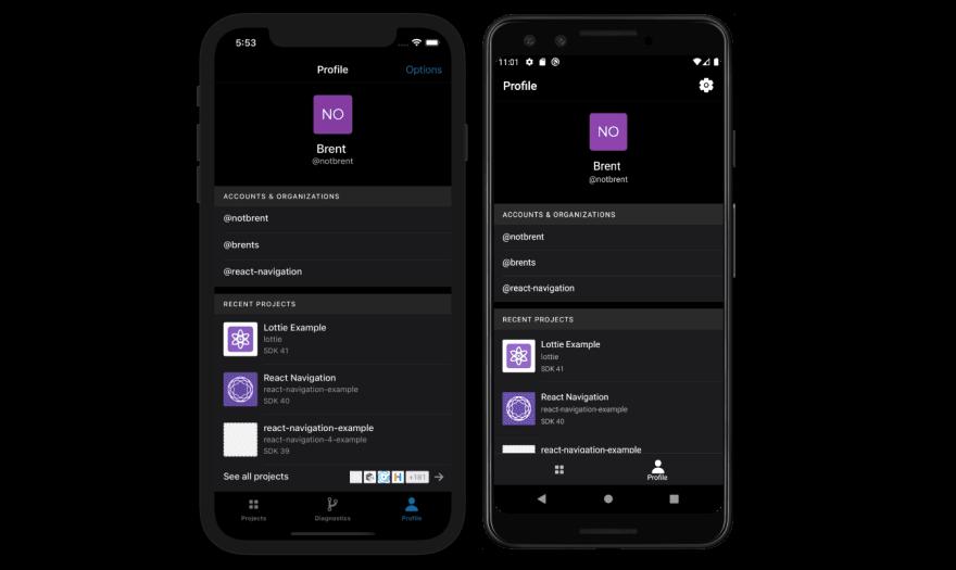 Accounts & Organizations screenshot on mobile phones