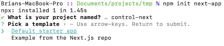 initializing a Next.js application