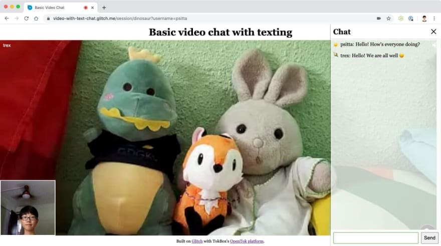 Screenshot of video chat with text chat