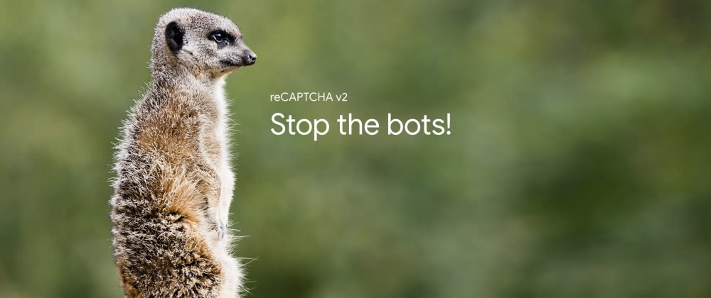 Cover image for Implementing Google reCAPTCHA with React and Node.js