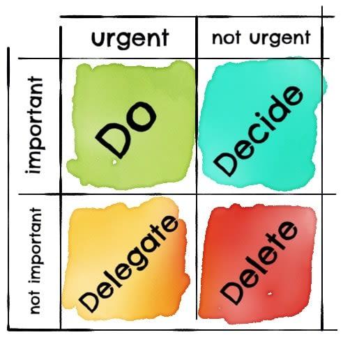 organization before