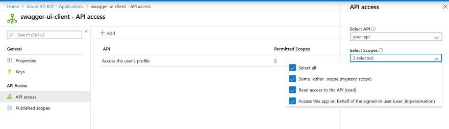 add-api-permissions